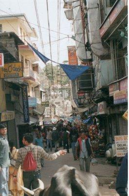 Bhagsu_0009.jpg